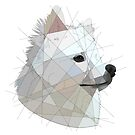 Geometric Spitz by Blacklightco