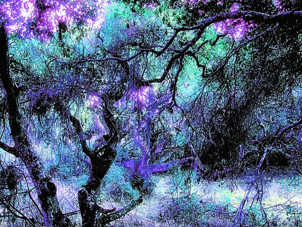 Composition With Gnarled Trees and Tangled Branches in Violet, Green and Black With Accents of Other Colors  by Ivana Redwine