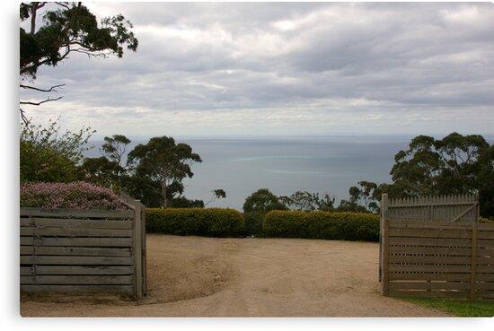 Gate by Amanda Hunt