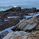 Pescadero Beach  by Josef Grosch