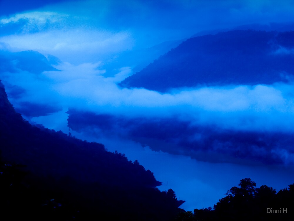 Sharavathi Valley by Dinni H