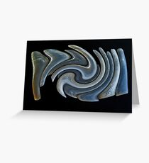 Razor Shells Greeting Card