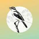 [9.13—9.17] Wagtails Sing by Lisa Furze