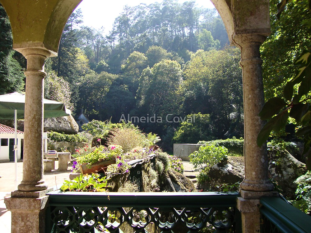 welcome to paradise 56..sintra portugal..(dedicated to Brenda Dow) by Almeida Coval