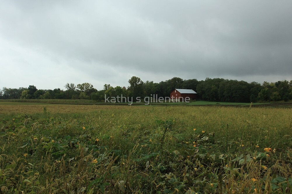 Carriage Hill farm by kathy s gillentine