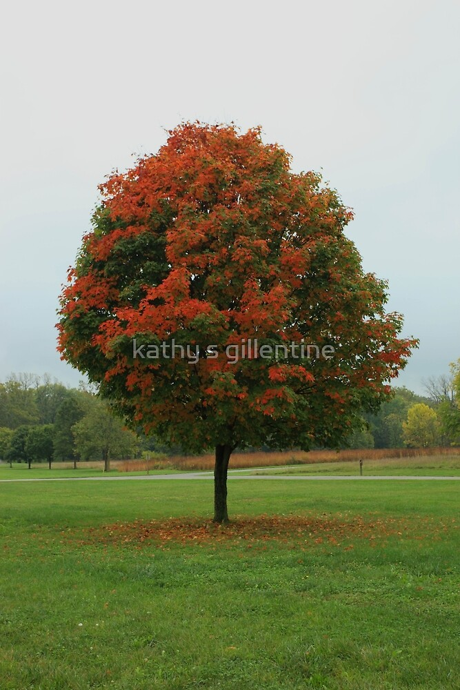 the arrival of fall by kathy s gillentine
