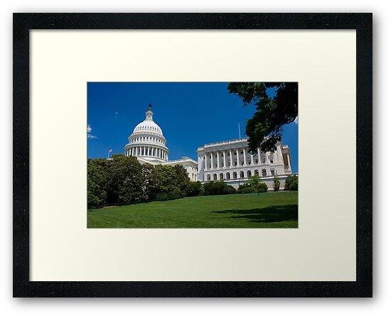 U.S. Capitol Building by kathy s gillentine
