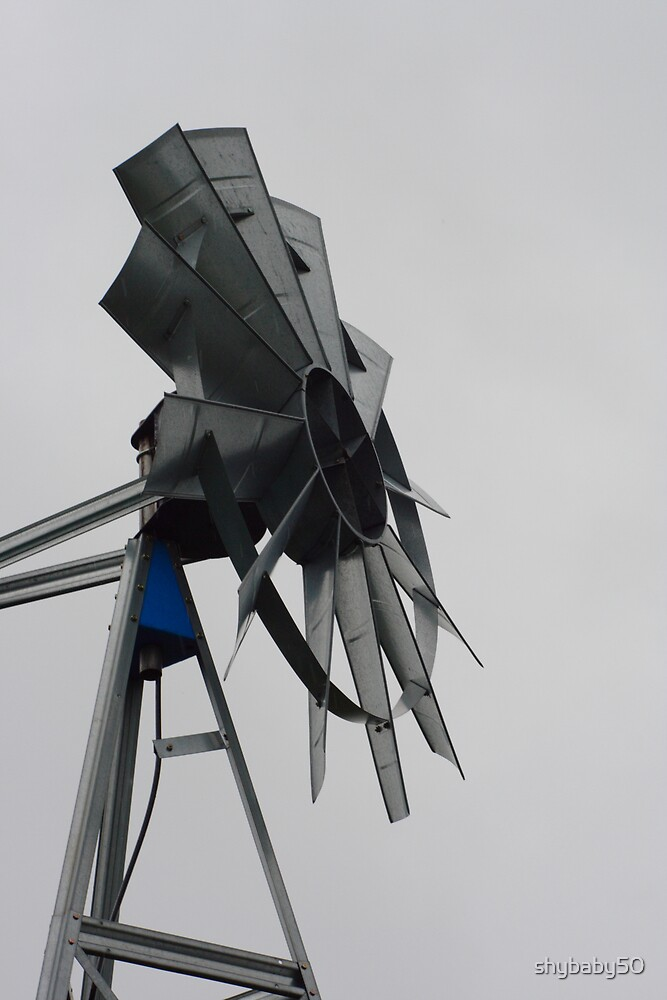 Windmill on Amish Farm by shybaby50