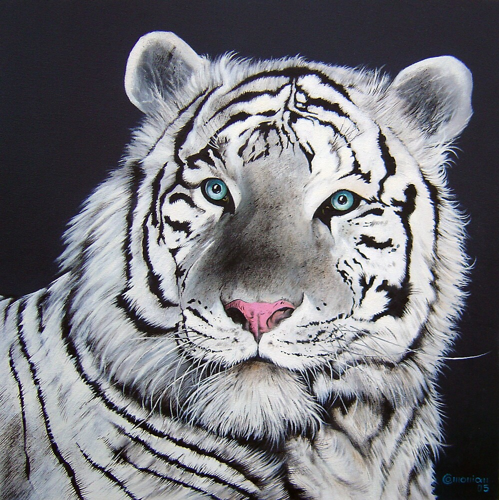 White Tiger by Comonian