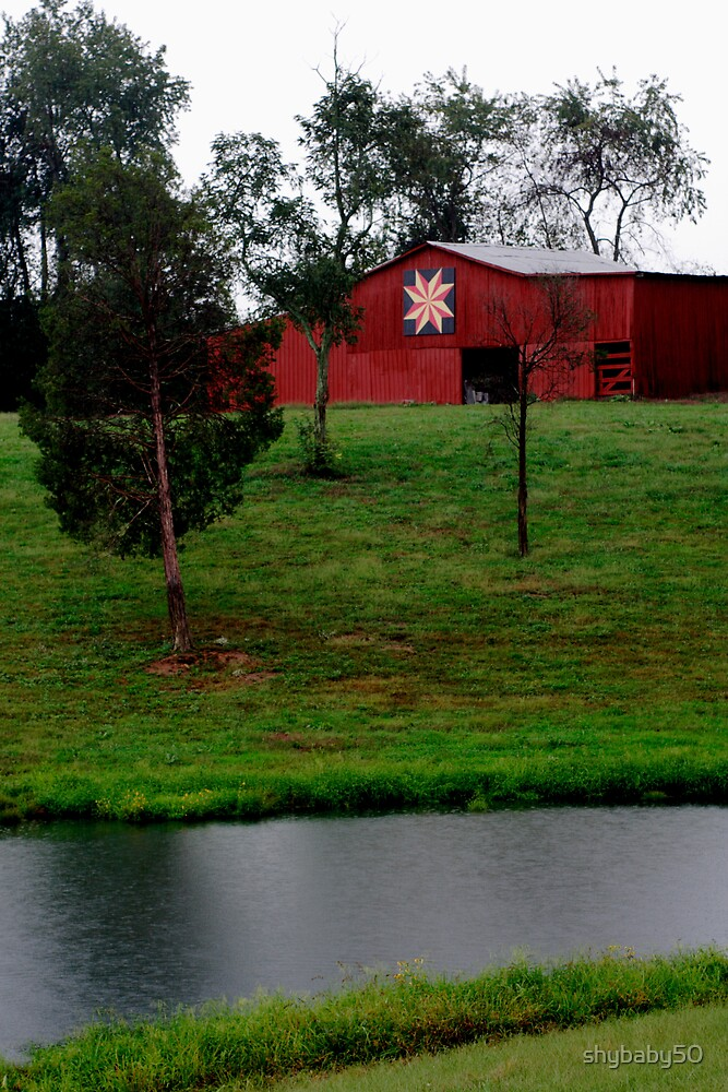 Old Quilt Barn in Ky by shybaby50