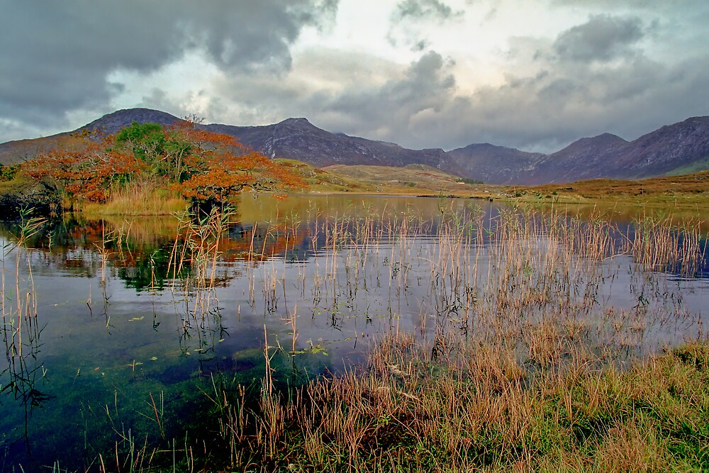 Gathering Storm by Allan Savage