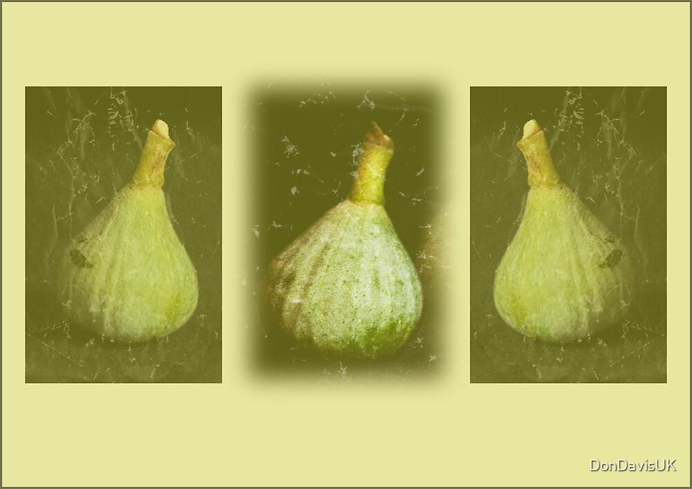 Fig Triptych by DonDavisUK