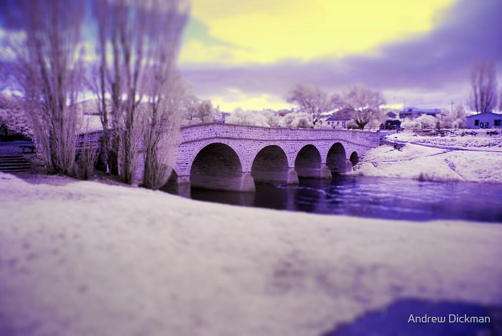 Bridge by Andrew Dickman