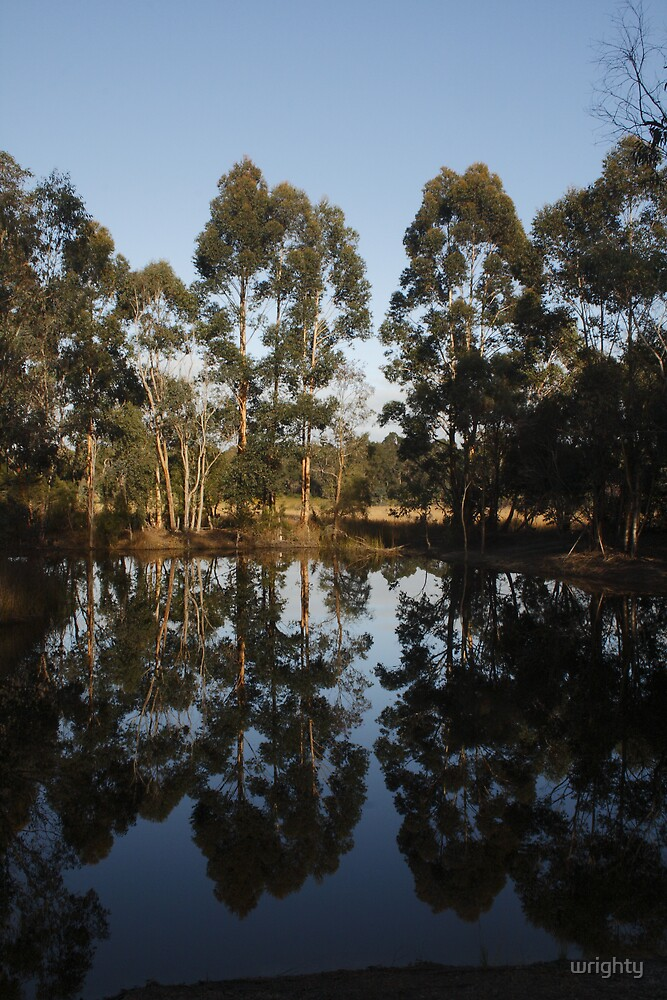 Early morning reflections by wrighty