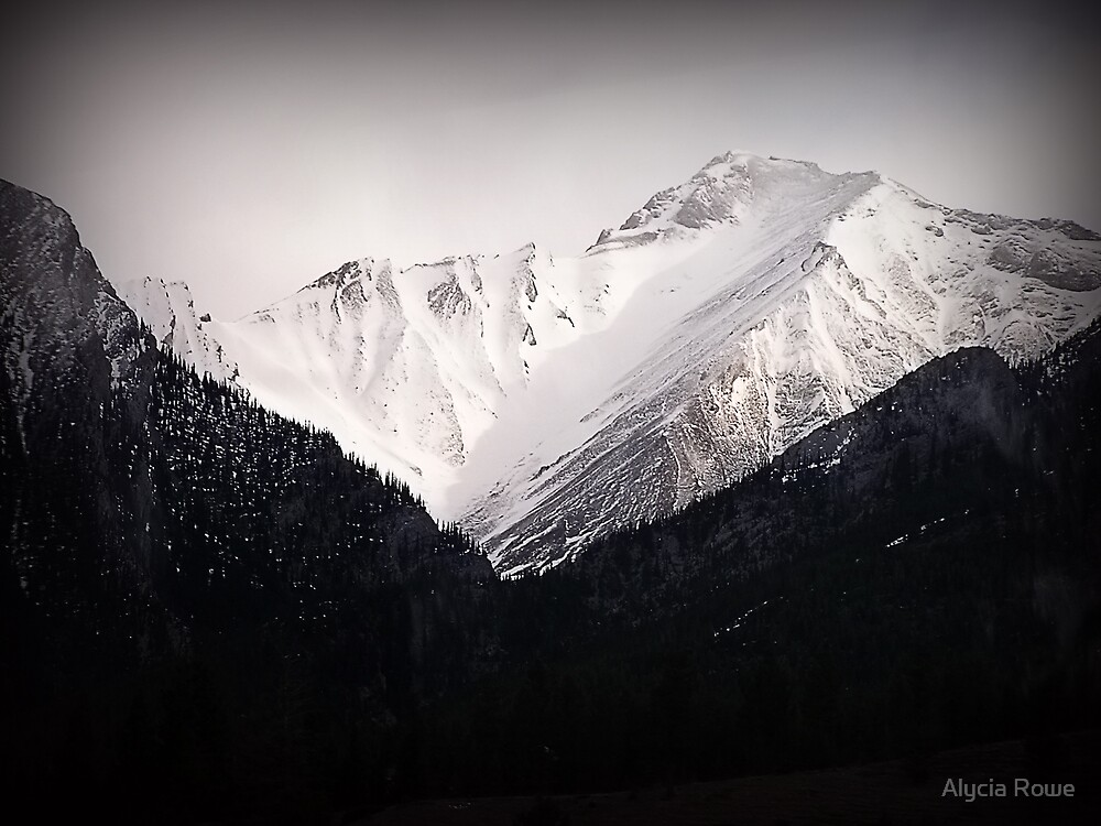 The Rockies by Alycia Rowe