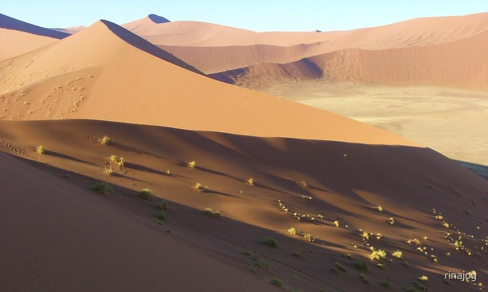 Dune 45, Namib Sand Sea, Namibia by rinajoy