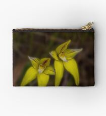 A Pair of Cowslips Studio Pouch