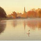 The Avon at Stratford-upon-Avon by Mark Salmon