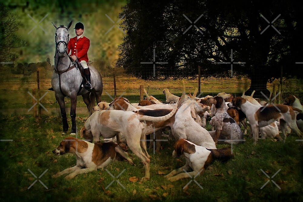 Horse & Hounds by Country  Pursuits