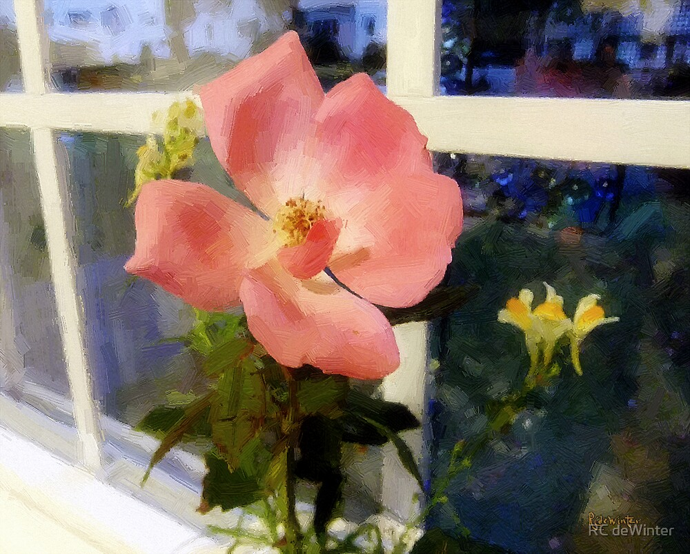 The Last Rose of Summer by RC deWinter