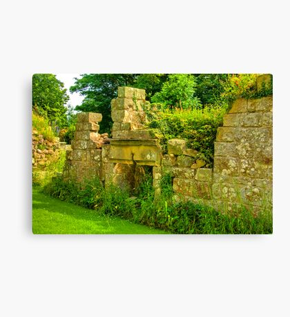 Disused Fireplace Canvas Print