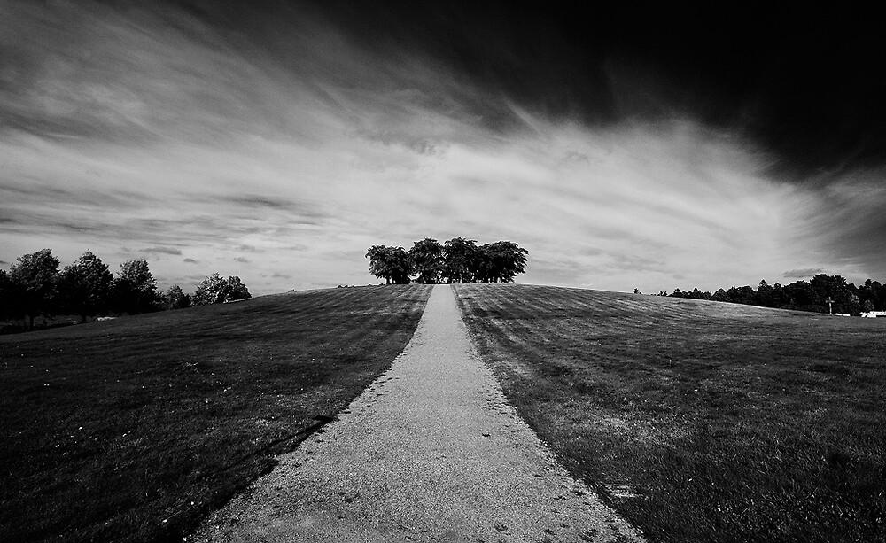 Woodland Cemetery by CalleHoglund