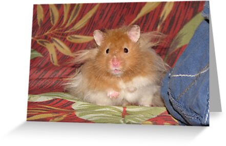 My name is Hamster Snuggles by Misty Lackey