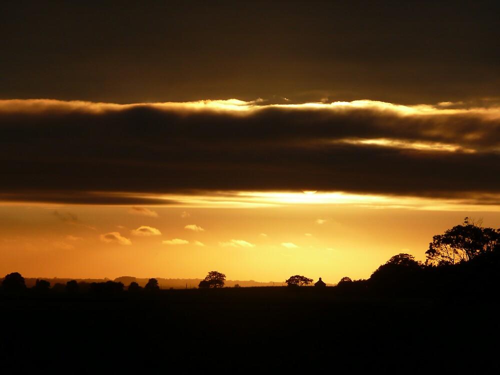 Sunset strip. by Carole Stevens