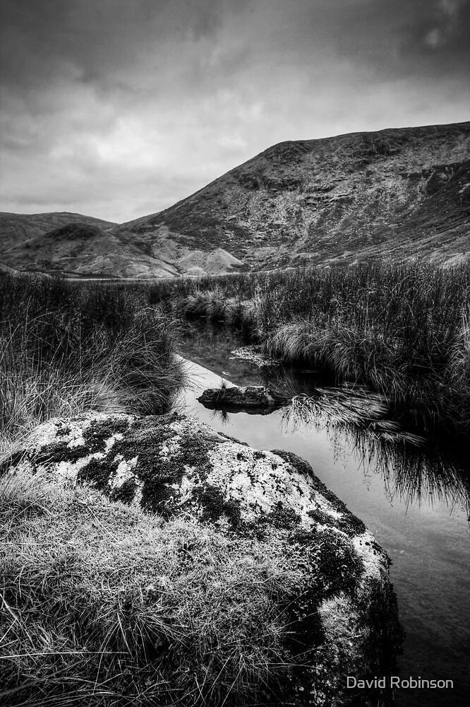 Wythburn valley #3 by David Robinson