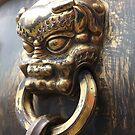 Tinamen Lion - China by daytona235