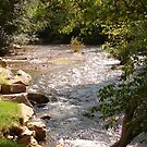 Spearfish Creek  by eltotton