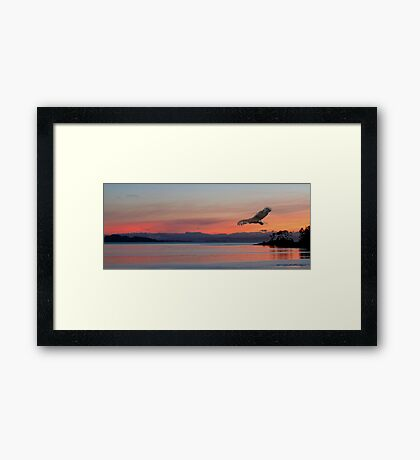 Point Of View l Framed Print