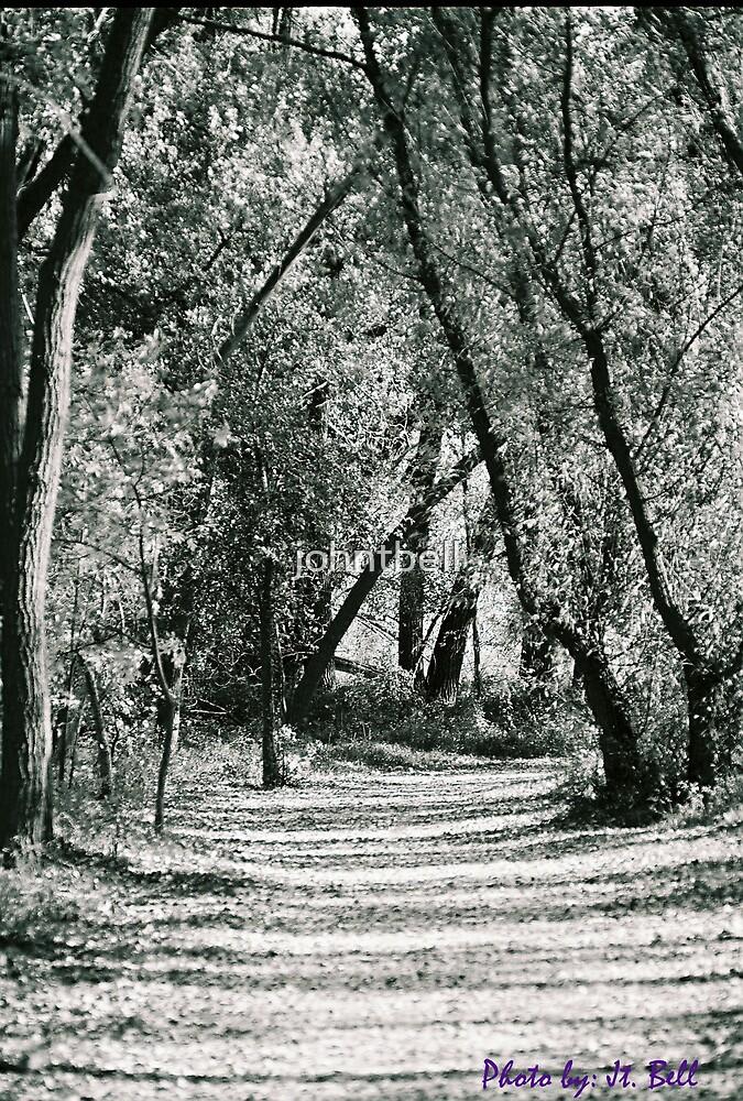 dark path by johntbell