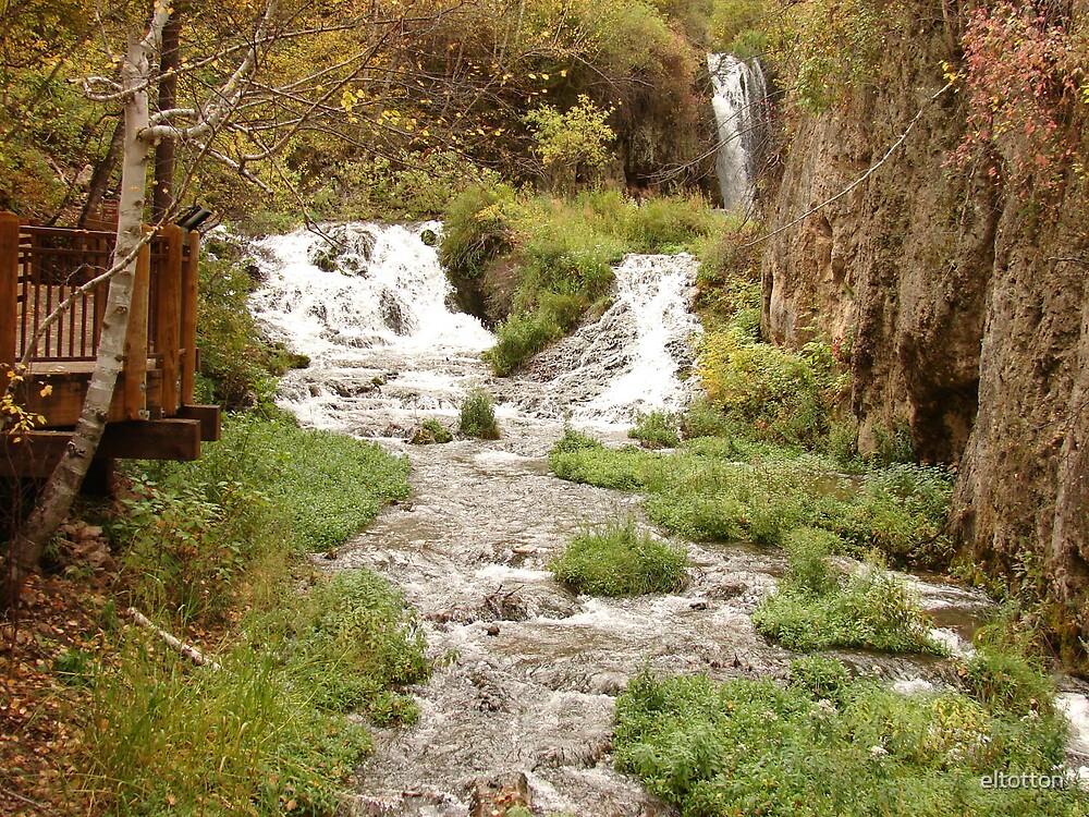 Roughlock Falls by eltotton