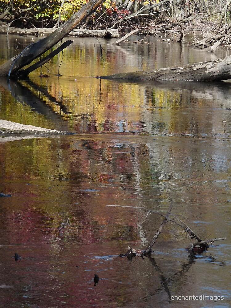 Colorful Impasse by enchantedImages