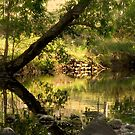 Kundibakh Creek by picketty