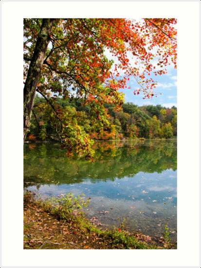Autumn Sunrise Landscape by Christina Rollo