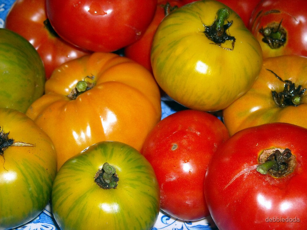 Colourful Pile of Tomatoes by debbiedoda