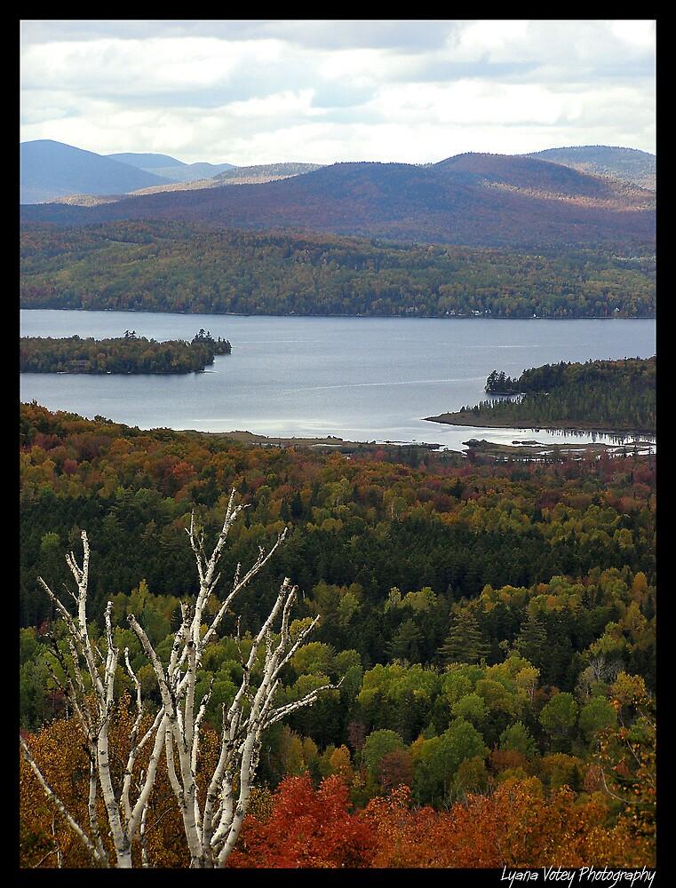 Mooselookmeguntic Lake by Lyana Lynn