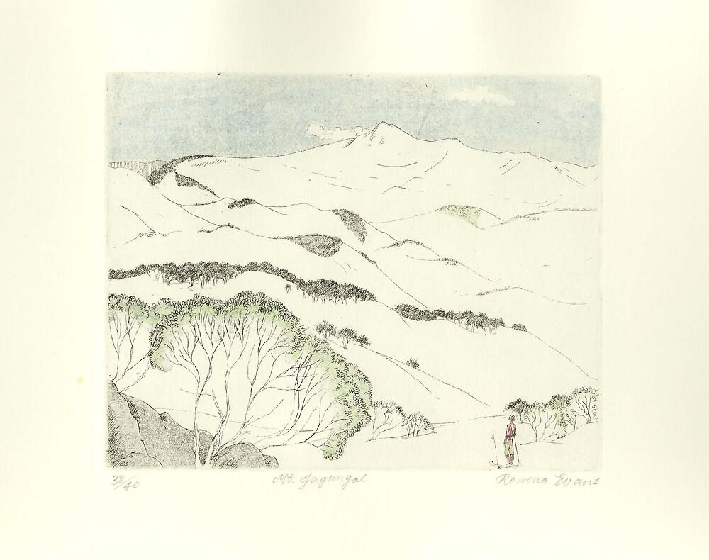 Mt Jagungal by Rowena Evans