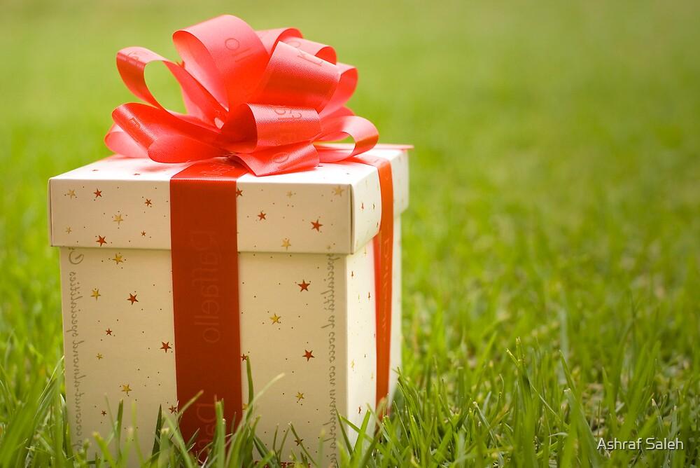 The Gift by Ashraf Saleh
