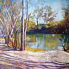 Long Shadows by Lynda Robinson