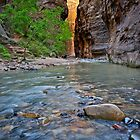River and Rock in Zion by Bruce Alexander