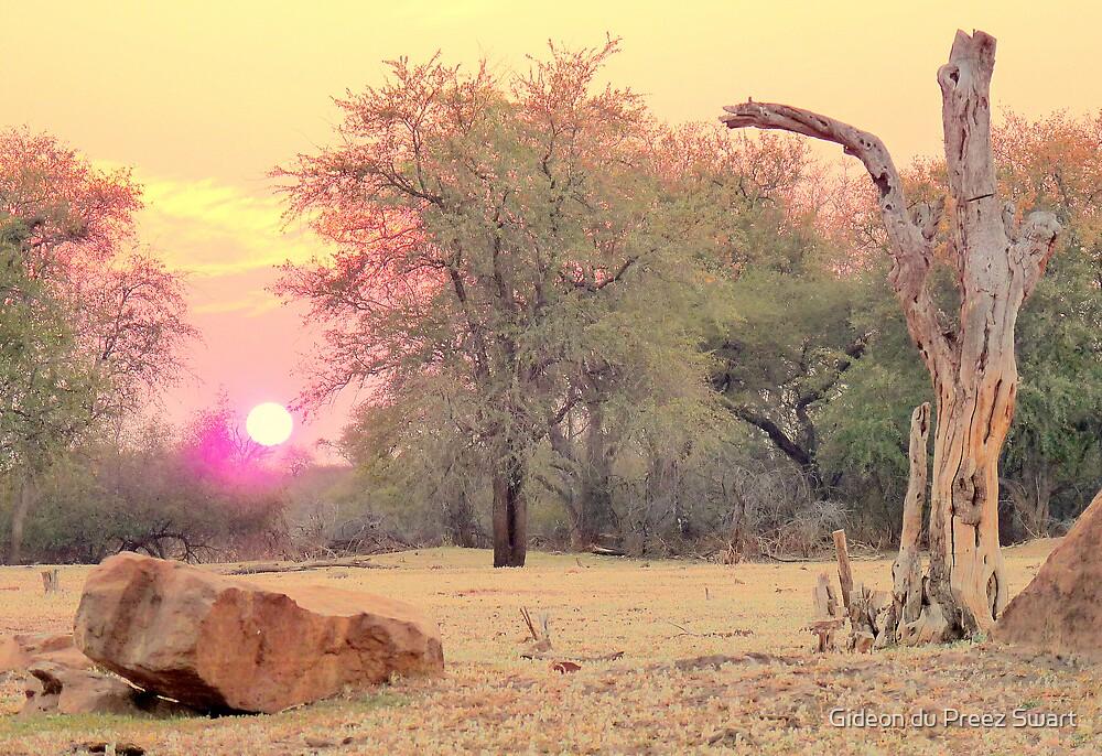 bushveld sunset by Gideon du Preez Swart
