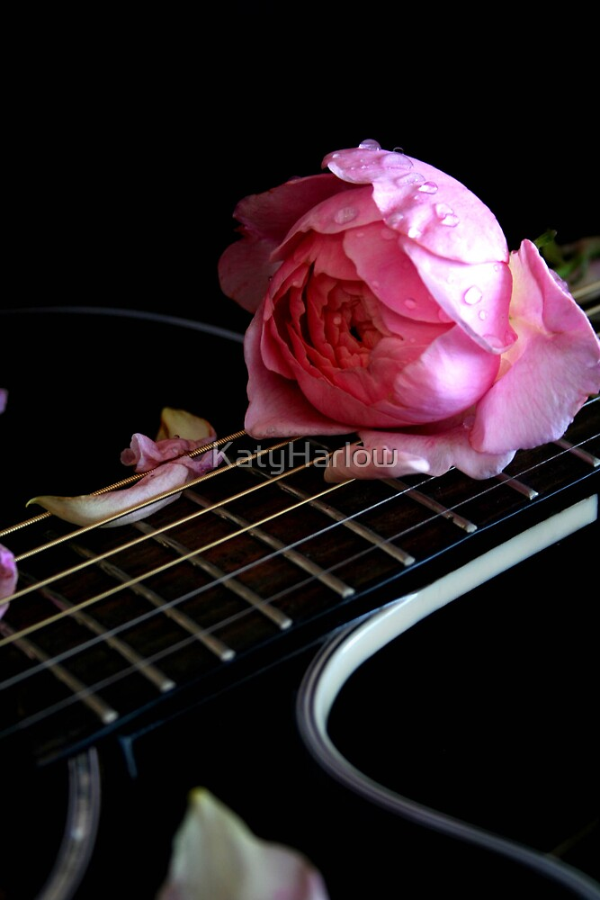 Guitar and Rose by KatyHarlow