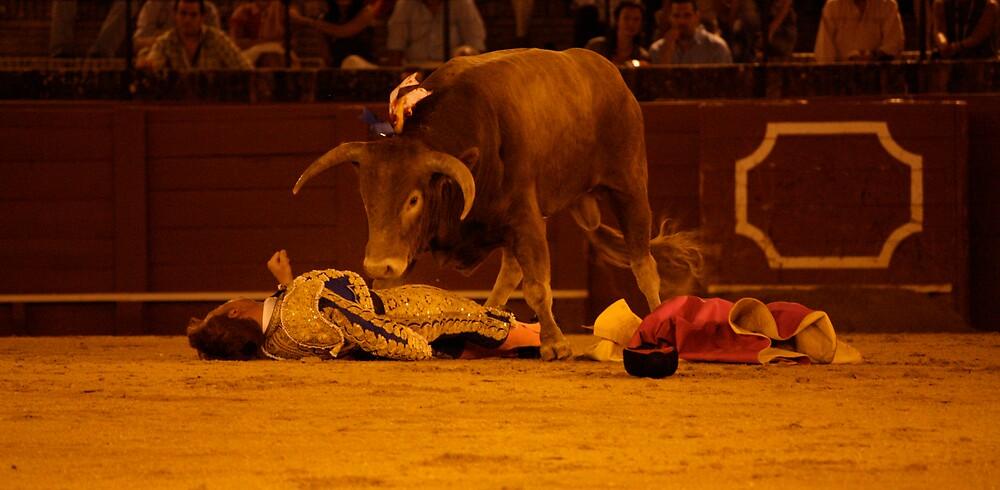 Bull gets his revenge by Rommel Andrew Henricus