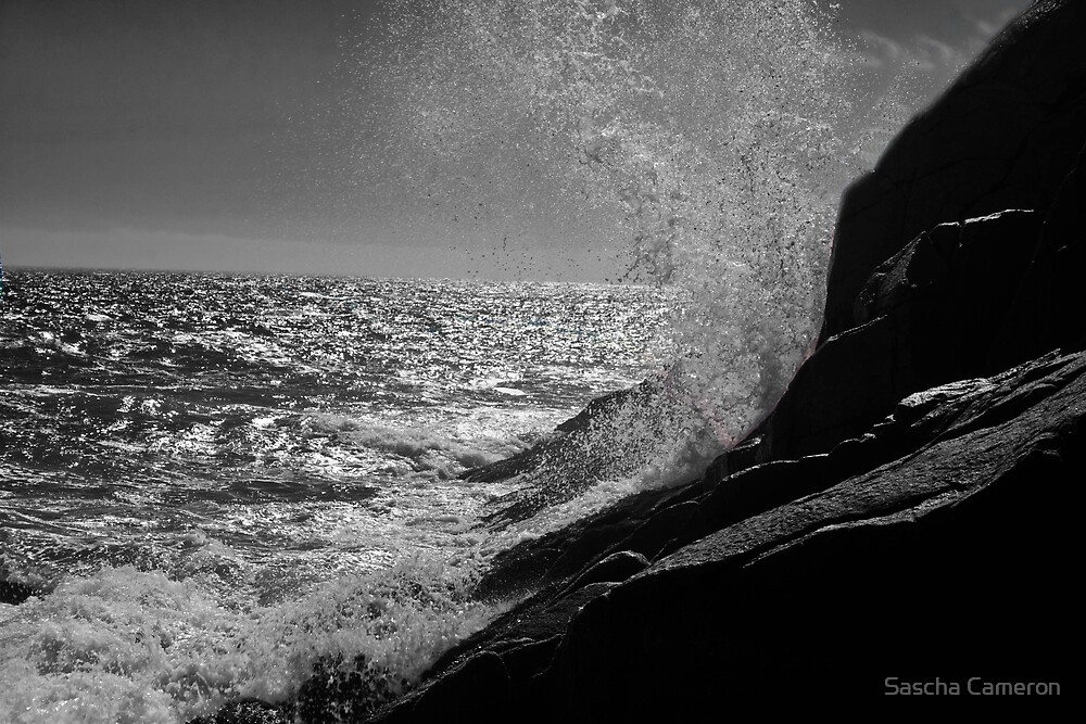 The Wave by Sascha Cameron
