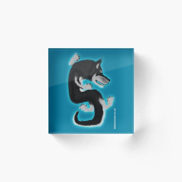 Dragon dog Husky Acrylic Block