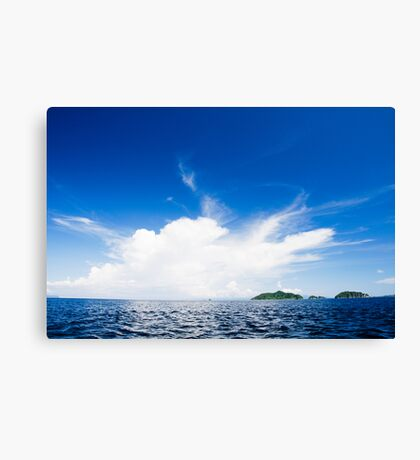 Blue And White Explosion! Canvas Print