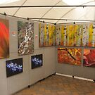 Art Show Display by Steve  Taylor